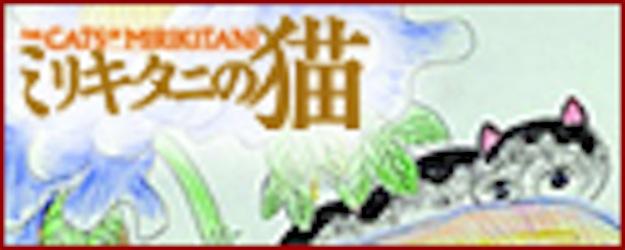 banner125-50